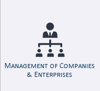 Management of Companies & Enterprises Industry