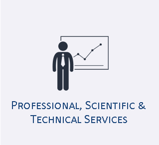 Professional, Scientific & Technical Services Industry