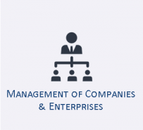 Management of Companies & Enterprises Industry