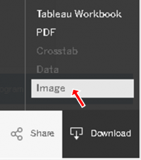 Image illustrating where the download Image function is located.